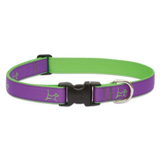 LUPINE nyakörv (CLUB Hampton Purple 2,5 cm széles 41-71 cm)