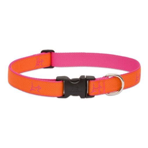 LUPINE nyakörv (CLUB Sunset Orange 2,5 cm széles 41-71 cm)