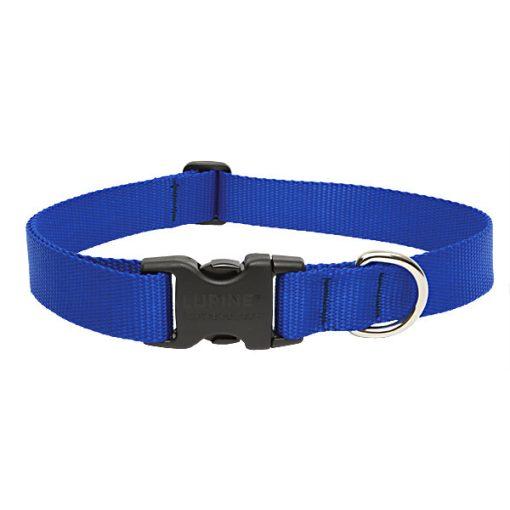 Lupine nyakörv (Kék nyakörv 2,5 cm széles 41-71 cm)